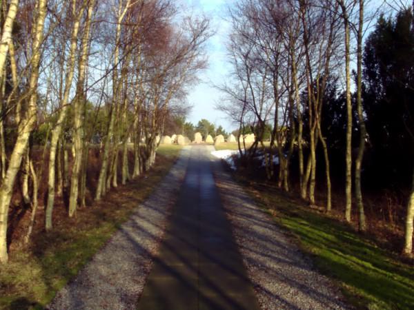 Der Friedhof von Sønderho
