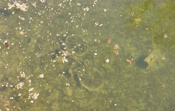 Entsorgung - Fahrrad in München